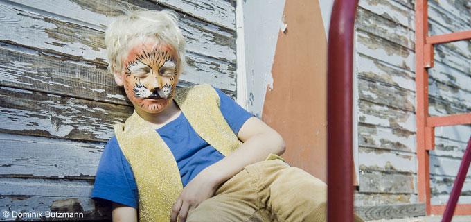 Der-schlafende-Tiger